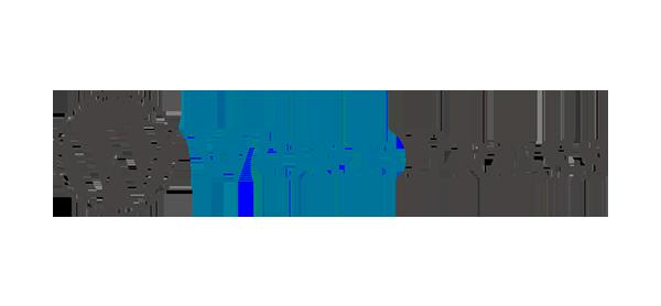 WordPress Content Management Services Dubai UAE